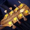 Cocobolo back headstock, gotoh 510 tuners