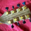 8 string back headstock